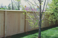 Wood fences are amazing options and a very popular choice. Wood comes in so many different options and styles and even maintained correctly, wood can last a very long time.